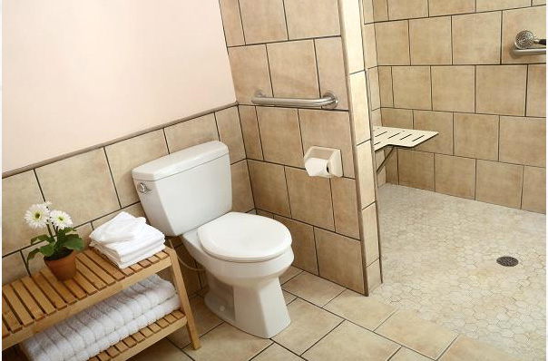 Easy Access Showers Handicap Accessible Showers - Accessible showers bathroom